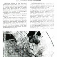 page 9 99060001.jpg